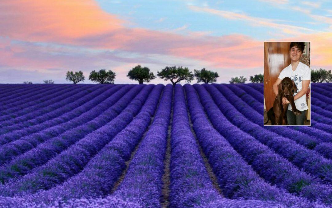Andrea's Food – Uova freche in alessandria e provincia – Uova di origine Piemontese
